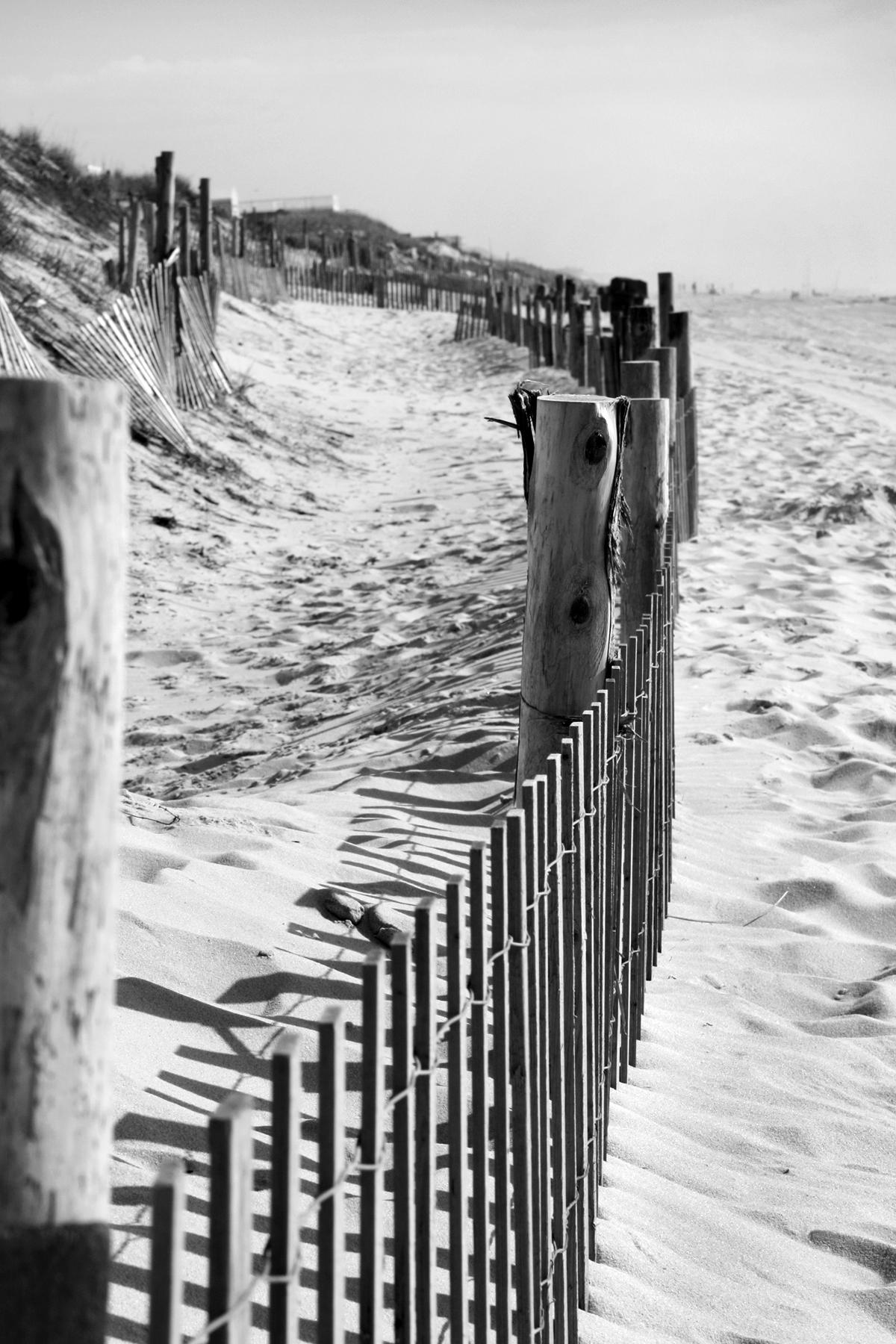beachfencelr-be05